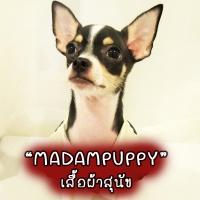 ร้านMadampuppy เสื้อผ้าสุนัข ที่นอนสุนัข