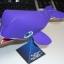 ปลาวาฬ thumbnail 1