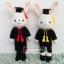 """ตุ๊กตาถัก กระต่ายรับปริญญา ม.เกษตรศาสตร์ 11"""" thumbnail 1"""