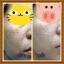ชุดครีมมินโซว (mixnzol) thumbnail 9