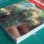 ไม้ประดับมงคล ชมรมพัฒนาไม้ดอกไม้ประดับ thumbnail 2