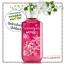 Bath & Body Works / Shower Gel 295 ml. (Winterberry Wonder) *Limited Edition thumbnail 1