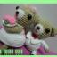 หมีคู่รักตัวน้อย thumbnail 5