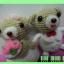หมีคู่รักตัวน้อย thumbnail 4