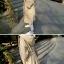 เสื้อคลุมตัวยาว มีฮูดพร้อมสายผูกเอว ทรงเก๋ ผ้าเนื้อด้าน บาง พร้อมส่ง thumbnail 5