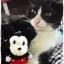 น้องแมวกะตุ๊กตา thumbnail 4