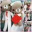 คู่แต่งงานหมีบ่าว-สาว 10 นิ้ว thumbnail 4