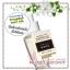 Bath & Body Works / Wallflowers Fragrance Refill 24 ml. (Vanilla Birch) thumbnail 1