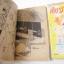 เก็บรักใส่สมุด 3 เล่มจบ / Fujimura Mari thumbnail 4