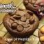 สอนทำ บราวนี่ - ฟัดจ์บราวนี่ - บราวนี่ชีสเค้ก - ชาเขียว มัทฉะ บราวนี่ - บลอนดี้ thumbnail 44