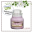 Yankee Candle / Small Jar Candle 3.7 oz. (Lavender) thumbnail 1
