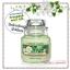 Yankee Candle / Small Jar Candle 3.7 oz. (Honeydew Melon) thumbnail 1