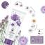 โลชั่นน้ำหอม CARA Perfume Body Lotion กลิ่น 05 Midnight thumbnail 1