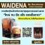 ราคาถูกสุดๆ Waidena by RaceHorse วายดีน่า บาย เรซฮอร์ส อาหารเสริมสำหรับท่านชาย สมุนไพรสกัดผสมเลือดจรเข้ thumbnail 3