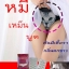Yumi Lady ยูมิเลดี้ สมุนไพรผัวหลง thumbnail 8