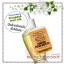 Bath & Body Works / Wallflowers Fragrance Refill 24 ml. (Pumpkin Pecan Waffles) thumbnail 1