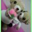 หมีคู่รักตัวน้อย thumbnail 3
