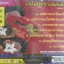 CD เพลงบทสวด พระโพธิสัตว์กวนอิมพันมือ มงคล1 thumbnail 2