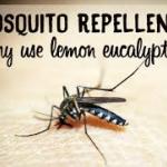 Euca-bug 50g