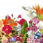 หัวน้ำหอม sweet floral 000871