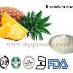 Bromelain Enzyme 20g