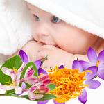 หัวน้ำหอมกลิ่น Baby clean 0002483