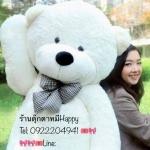 ตุ๊กตหมีขาวลืมตา1.6เมตร