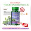 ((บำรุงสายตา มีความเข้มข้นของบิลเบอร์รี่สูงสุด)) Puritan Bilberry 1000 mg 90 Softgels (Extract 250 mg) (USA) ช่วยบำรุงและเพิ่มความชุ่มให้กับดวงตา เหมาะกับผู้ที่ใช้สายตาเป็นประจำนานๆ
