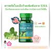 Puritan Ginkgo Biloba Extract 100 mg 120 Capsule (USA) สารสกัดใบแป๊ะก๊วยเข้มข้น ป้องกันสมองและความจำเสื่อม กระตุ้นความจำให้ดีขึ้น