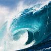 หัวน้ำหอมกลิ่น โอเชี่ยน ocean 001862