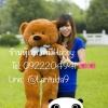 ตุ๊กตาหมีน้ำตาลเข้มลืมตา1.2เมตร