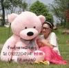 ตุ๊กตาหมีสีชมพูลืมตา1.4เมตร