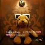 ตุ๊กตาหมานุ่มนิ่ม70cm