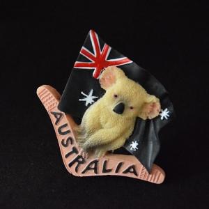 หมีโคอาล่า ออสเตรเลีย Australia