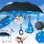 ร่มหุบกลับด้าน 2 ชั้น ร่มกลับด้าน ร่มหน้าฝน invert umbrella สามารถใช้ได้ทุกฤดูกาล ขาด 24 นิ้ว -(สีฟ้า ลายท้องฟ้า/ดำ) thumbnail 1