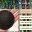 ฟองน้ำล้างหน้า ฟองน้ำขัดหน้า ฟองน้ำใยบุก ผสมผงถ่านไม้ไผ่ สำหรับผิวมัน ผสม เป็นสิว (สีดำ) thumbnail 1