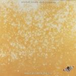 Michael Franks - Sleeping Gypsy