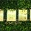 สมุดโน๊ตปกทองคละลาย ขนาด คือ 7x5.5 cm thumbnail 3