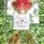ช้อน-ส้อม ปลายหัวใจ แพคถุงใส thumbnail 3