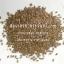 สมุนไพรเมล็ดแฟลกซ์ / แฟล็กซีด / แฟลกซีด / แฟลกซ์ซีด / เมล็ดแฟล็ก / แฟล็กซ์ซีด / flax seed / flaxseed thumbnail 1