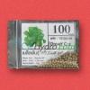 เมล็ดพันธุ์ Green Cos (เคลือบ) 100 เมล็ด
