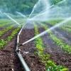 """ความรู้ทั่วไป การรดน้ำพืชสวนตามสภาพอากาศ"""""""
