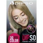 ชาร์ทสี ฺฺDipso Vibrancy Hair Color 30 Color Shades of Hair