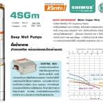 4SGm Deep Well Pumps ปั๊มน้ำบาดาล (หัวทองเหลือง พร้อมกล่องคอนโทรลด้านนอก) รุ่น 4SGm 4/14-1.1A-F