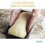 การหมักแป้ง ขนมปัง (BREAD PROVING)