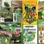 หัวเชื้อรา เมธาไรเซียม บริสุทธิ์ สำหรับขยายเชื้อ กำจัดแมลง thumbnail 6