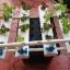 ชุดปลูกผักไร้ดิน (Hydroponics) 16 ช่องปลูก thumbnail 2