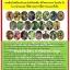 4สหาย จุลินทรีย์กำจัดโรคพืช(เชื้อรา,แบคทีเรีย) thumbnail 2