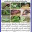ชุดขยายเชื้อ5พลัง กำจัดแมลงศัตรูพืช โรคพืช thumbnail 2