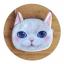 กระเป๋าสะพายโซ่น้องแมว 3มิติ thumbnail 5